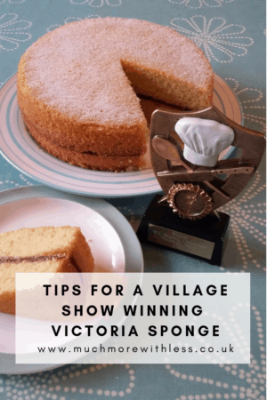 Pinterest size image of my prize winning Victoria sponge with baking trophy