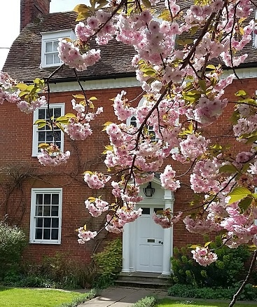 Picture of our house with cherry blossom, maintained partly with the help of tax-free allowances.