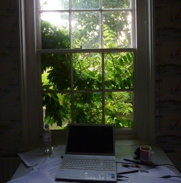 Photo of laptop computer on my desk by a window covered with wisteria, when I logged on to Plusnet to save money on our landline rental