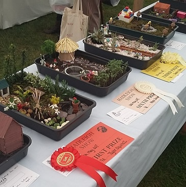 Picture of garden in a seed tray entries at the Hadleigh Show, including winning entries with rosettes and certificates