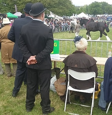 Picture of stewards in bowler hats and a lady in a fascinator judging a horse at the Hadleigh Show