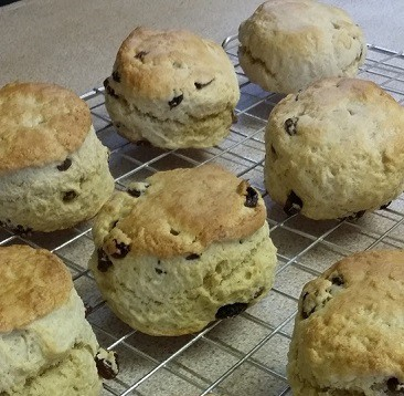 Picture of home-made thrifty frugal fruit scones on a cooling rack, an example of budget baking