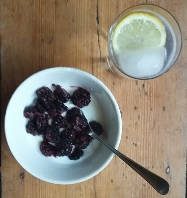 Picture of a bowl of low-fat natural yogurt and blackberries next to a glass of gin and tonic with a slice of lemon. Slimming weight-loss friendly on the first day of my WeightWatchers diet.