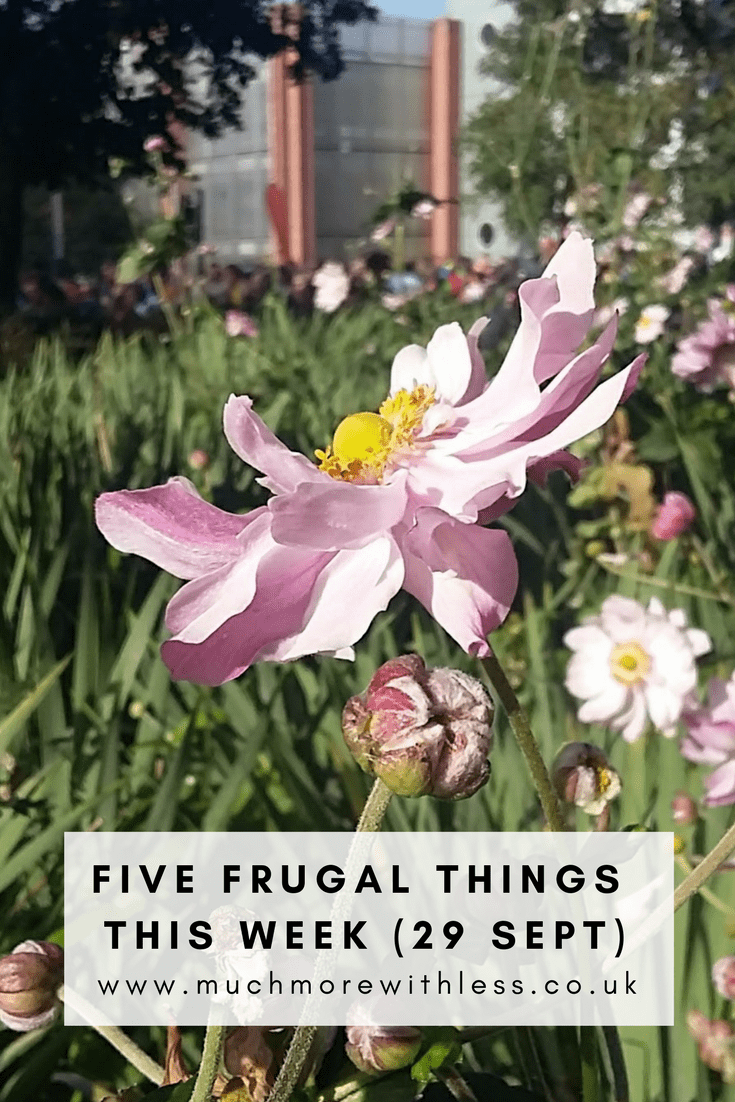 Round up of my five frugal things in a bread-bashing, goody-bag-grabbing, mother-chatting, half-marathon-running kind of week.