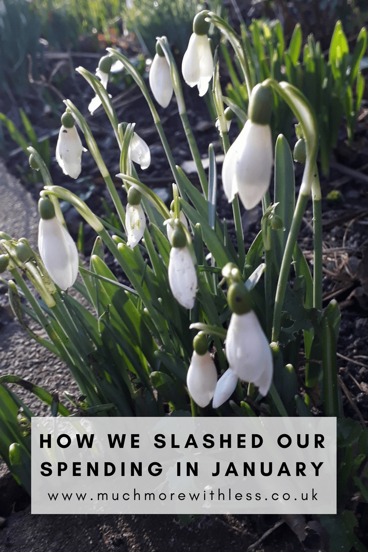 Pinterest sized image to illustrate a post about how we slashed our spending in January with a picture of snowdrops
