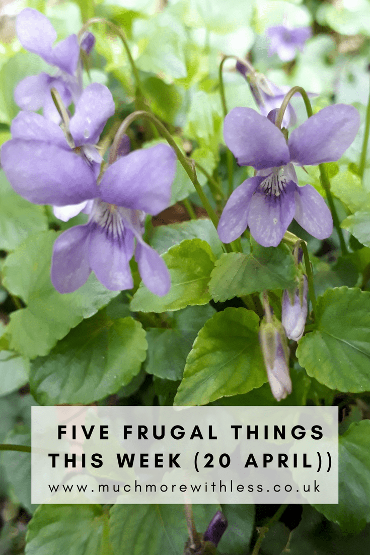 Pinterest size image of purple viloets for my five frugal things this week post