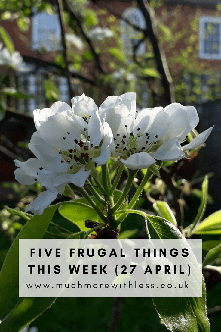 Pinterest sized image of plum blossom for my five frugal things post