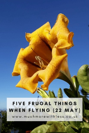 Pinterest sized image for my five frugal things when flying post
