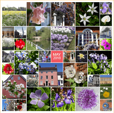 Collage of all my pictures on Instagram during May 2018 with lots of flowers and buildings