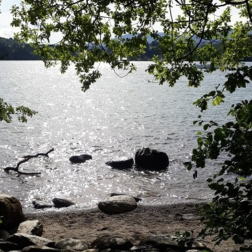 Picture of the shoreline of Lake Windermere with trees above, for my post on five frugal things for our holiday