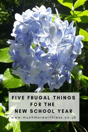 Pinterest sized image of blue hudrangea flowers for my post on frugal things for the new school year