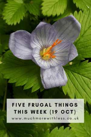 Pinterest sized image of a purple autumn crocus against strawberry leaves for my five frugal things this week post
