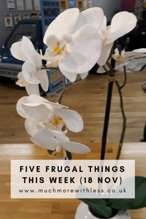 Pinterest sized image of a white orchid for my five frugal things post