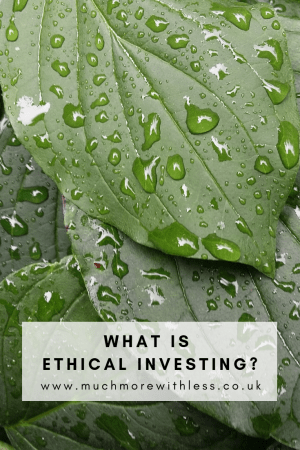 Pinterest size image of green leaves with raindrops for my post on ethical investing