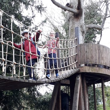 Picture of my two children on a rope bridge between tree houses in the Abbey Gardens in Bury St Edmunds