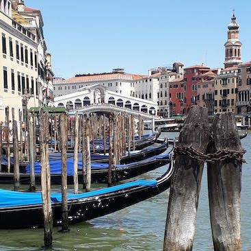 Picture of gondolas on the grand canal in Venice, with the Rialto Bridge behind