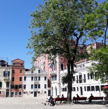 Picture of Campo S. Polo with trees and houses