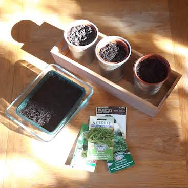 Picture of flower pots and seed packets in my attempts to grow herbs and salad plastic free