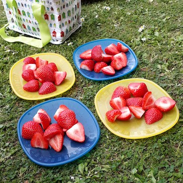 Picture of picnic bag and strawberries set out on the grass