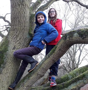 Picture of my two up a tree for my post on how to entertain kids for less