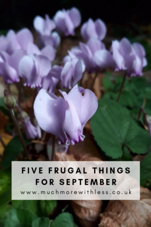 Pinterest size image of purple cyclamen and autumn leaves for my post on 5 frugal things for September