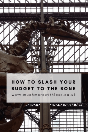 Pinterest size image of a dinosaur skeleton for my post on how to slash your budget to the bone