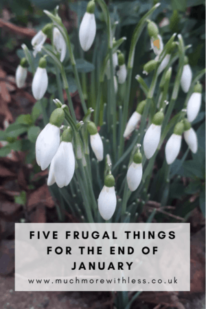 Pinterest size image of snowdrops for my post with 5 frugal things for the end of January
