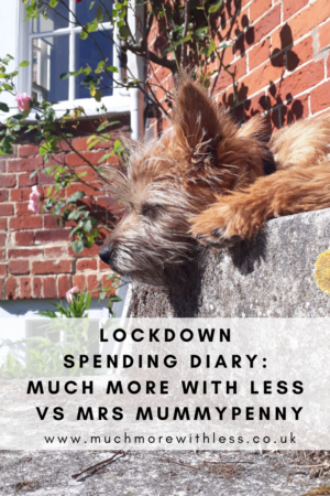 Pinterest size image of my dog outside my house for a post about my lockdown spending diary