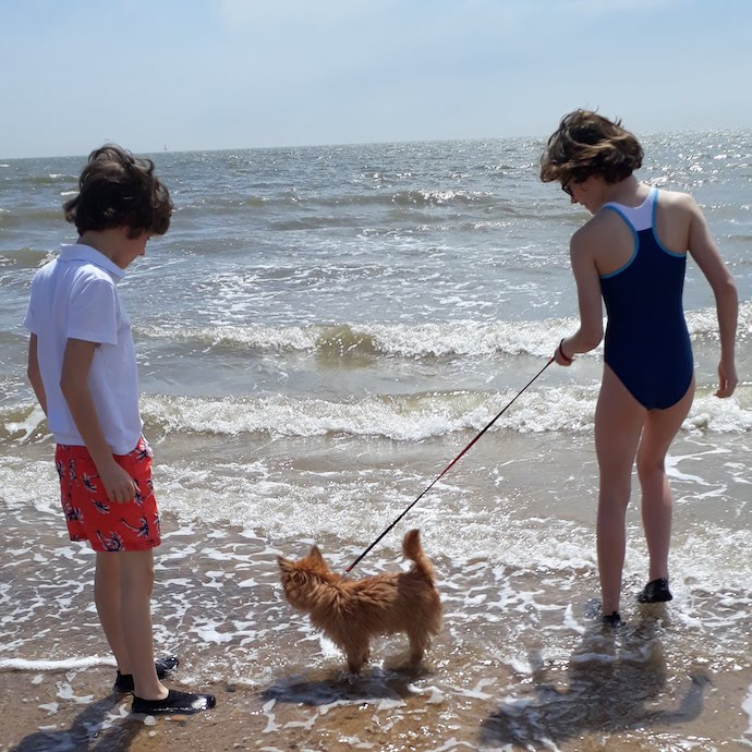 Picture of my children showing our dog the sea at Walberswick