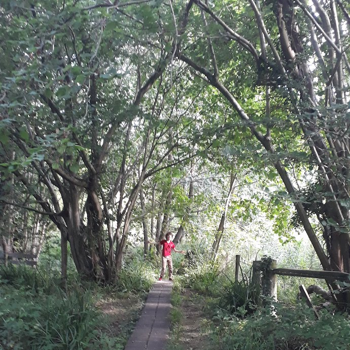 Picture of my son on a woodland walk