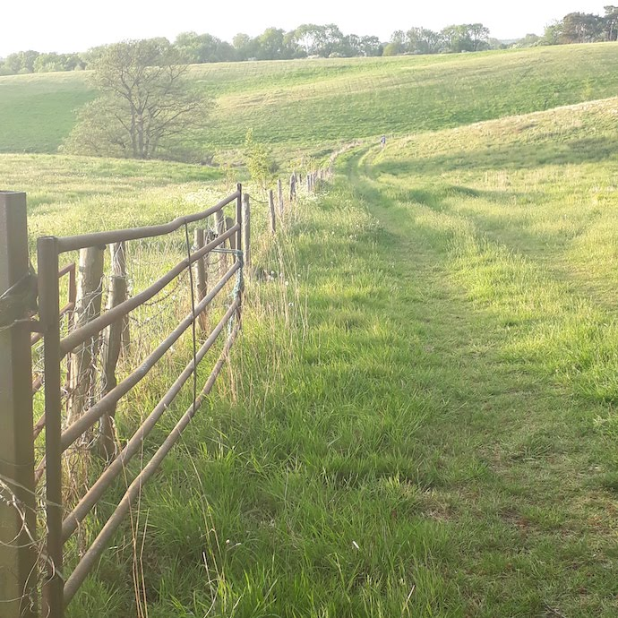 Picture of a gate and a path over a field for my post on using your pension to build a better world