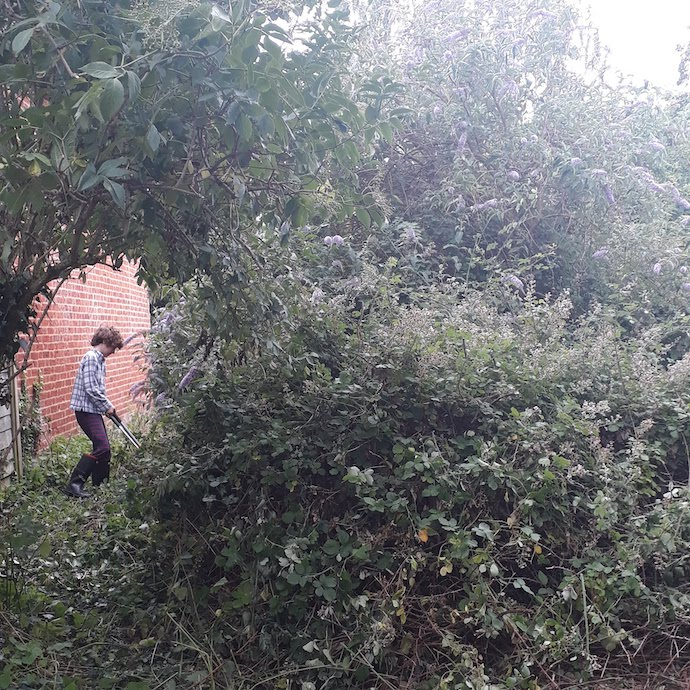 Picture of my son cutting his way through loads of brambles and nettles
